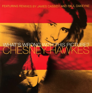 "Chesney Hawkes - What's Wrong With This Picture? (12"") (VG-EX/EX+)"